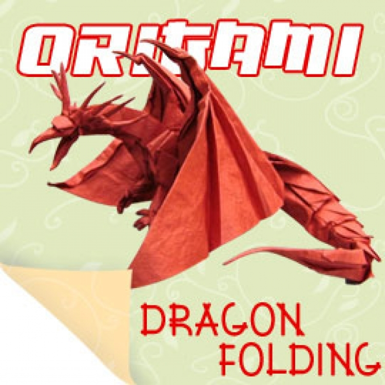 Learn Origami  Easy Origami Instructions Videos for